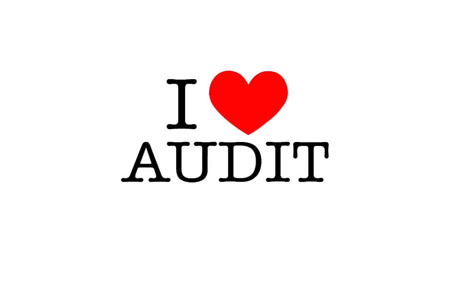 barn-audit-1